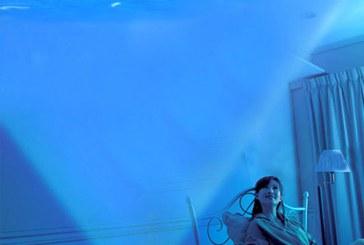 چطور رنگ آبی به شادی و نشاط من کمک می کند؟